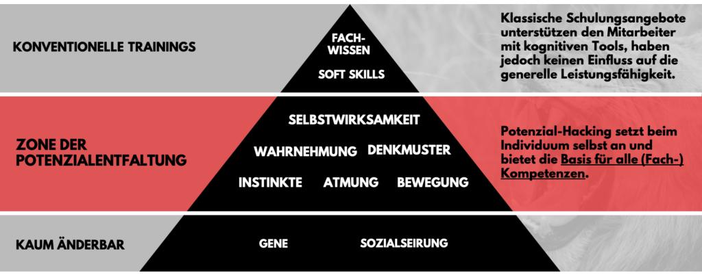 RobinWestermann_Pyramide